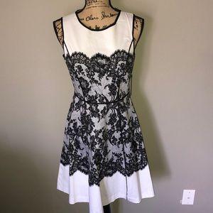 NY&C stretch floral lace print dress size 2